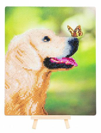 Hund und Schmetterling