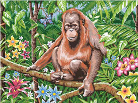 Orang-Utan auf dem Ast
