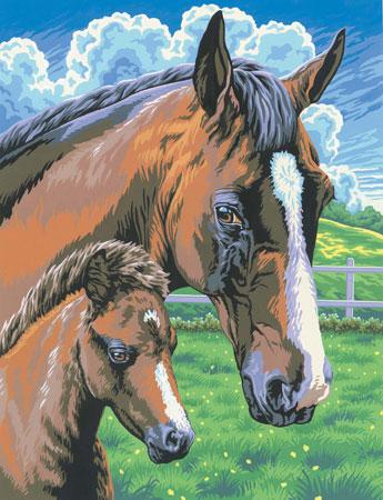 Malen nach Zahlen Bild Pferd mit Fohlen - 8220030 von Mammut