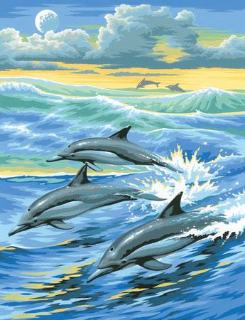 Malen nach Zahlen Bild Delfine - 8220031 von Mammut