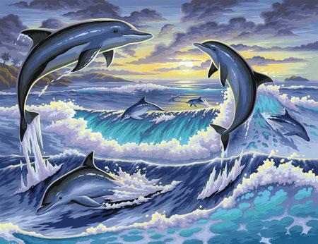 Malen nach Zahlen Bild Delfine - 8240563 von Mammut