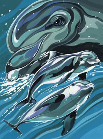 Malen nach Zahlen Bild Delfine - A30PBNJ4 von Mammut