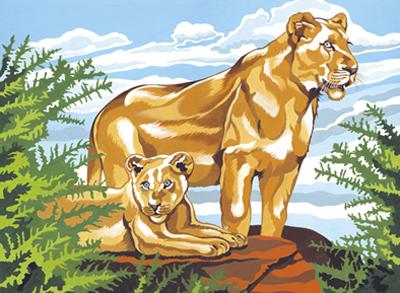 Malen nach Zahlen Bild Löwen - A30PL/90 von Mammut