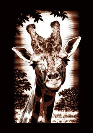Giraffe Von Sonstiger Hersteller A30pcfme Kaufen Bei Kreativ