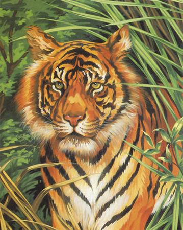 Malen nach Zahlen Bild Tiger - 105020 von Mammut