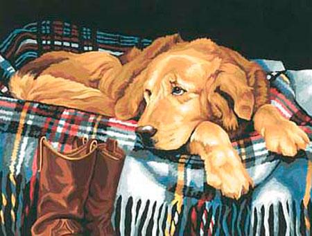 Malen nach Zahlen Bild Hundefaul - 91110 von Sonstiger Hersteller