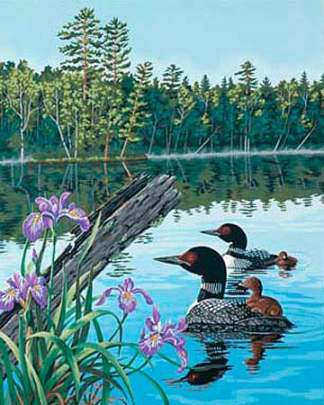 Malen nach Zahlen Bild Entenfamilie - 91298 von Paintworks