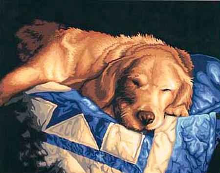 Tierisch Müde
