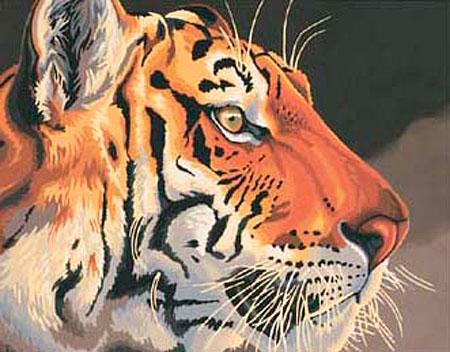 Malen nach Zahlen Bild Tiger im Detail - 91323 von Paintworks