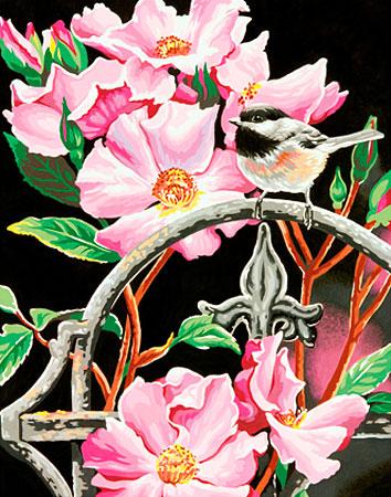 Malen nach Zahlen Bild Rosa Blumen - 91439 von Sonstiger Hersteller