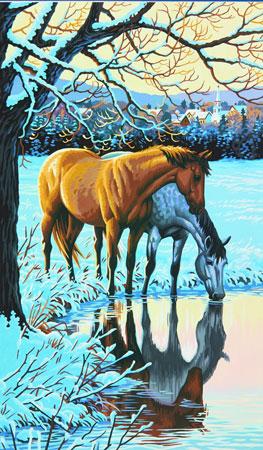 Malen nach Zahlen Bild Pferde im Wasserspiegel - 91492 von Paintworks