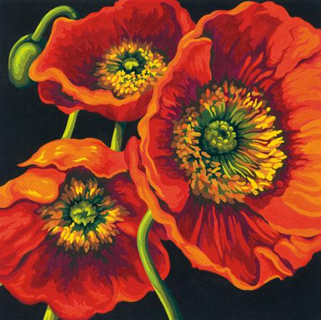 Malen nach Zahlen Bild Mohnblüten - 91527 von Sonstiger Hersteller