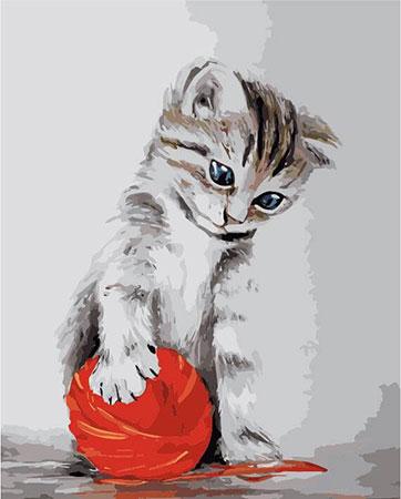 Malen nach Zahlen Bild Kätzchen mit Ball - MG2075e von Protsvetnoy