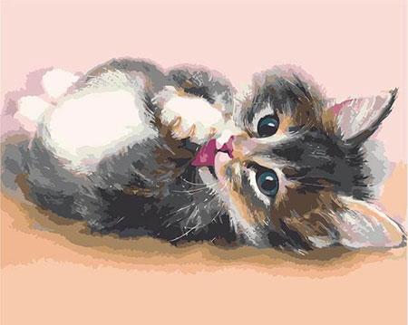 Entspanntes Kätzchen