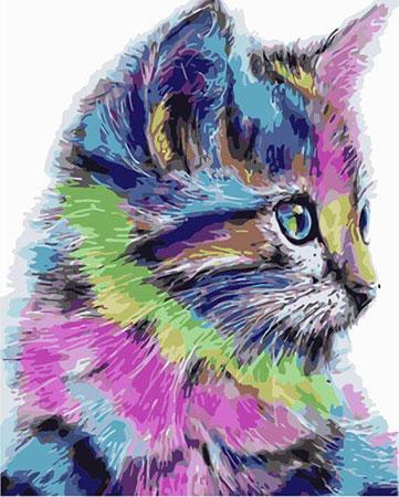 Bunte Katze