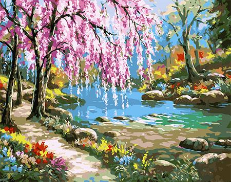Malen nach Zahlen Bild Sakura am Fluss - mg6099e von Protsvetnoy