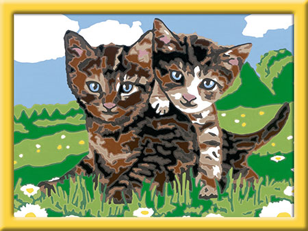 Malen nach Zahlen Bild Verspielte Kätzchen - 27836 von Ravensburger