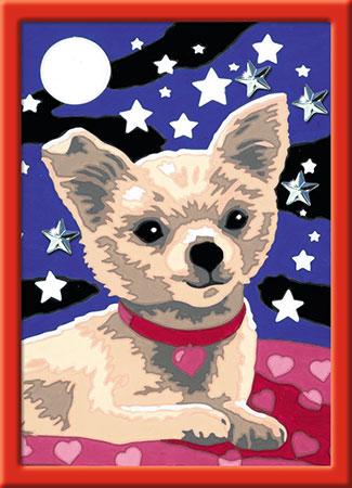 Malen nach Zahlen Bild Lieber Chihuahua           - 27841 von Ravensburger