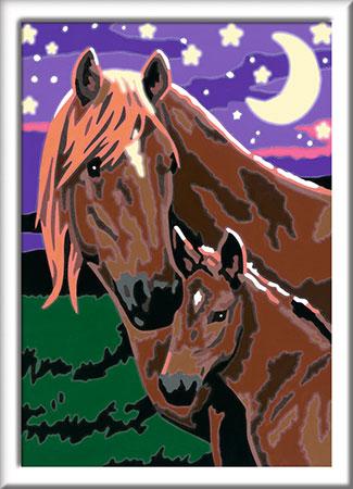 Malen nach Zahlen Bild Pferde                     - 27844 von Ravensburger