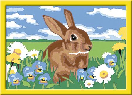 Malen nach Zahlen Bild Süßes Kaninchen - 28064 von Ravensburger