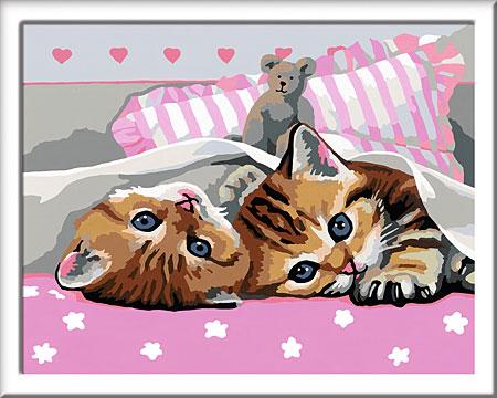 Süßes Kätzchen