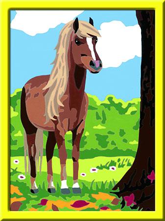 Malen nach Zahlen Bild Pferdeglück - 28515 von Ravensburger