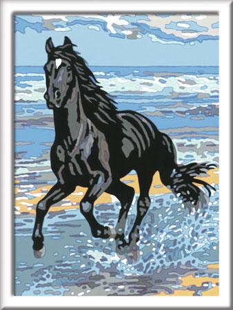 Malen nach Zahlen Bild Pferd am Strand - 28565 von Ravensburger