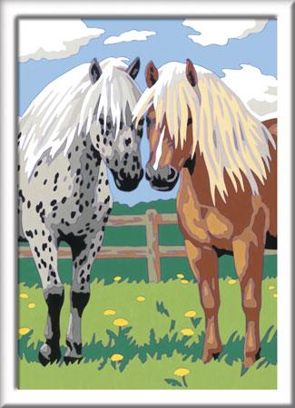 Malen nach Zahlen Bild Glückliche Pferde - 28566 von Ravensburger
