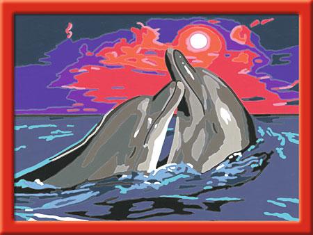 Delfinromantik