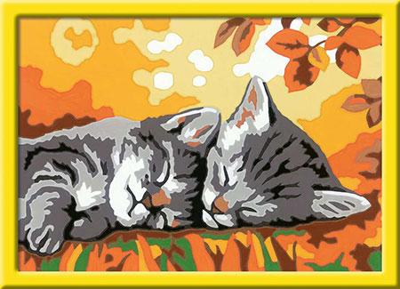 Malen nach Zahlen Bild Kätzchen im Herbst - 28696 von Ravensburger