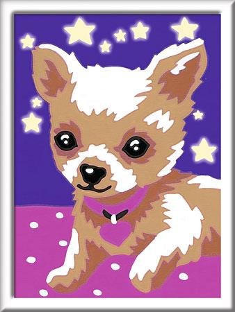 Malen nach Zahlen Bild Chihuahua - 29595 von Ravensburger