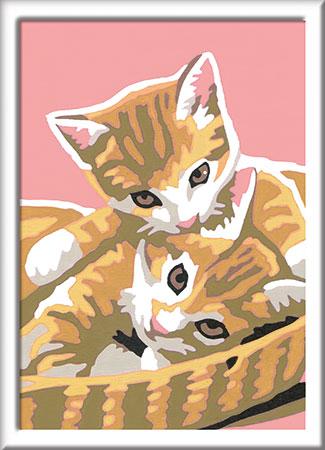 Malen nach Zahlen Bild Katzenbabys - 29686 von Ravensburger