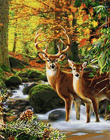 Malen nach Zahlen Bild Hirsche im Wald - 609130810 von Sonstiger Hersteller