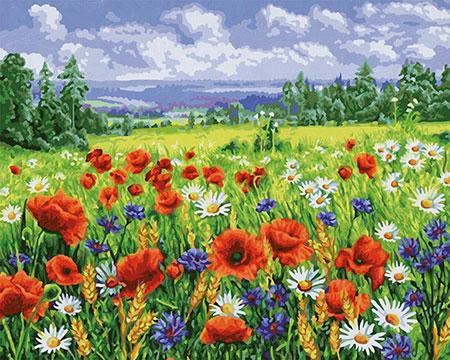 Malen nach Zahlen Bild Blumenwiese - 609130824 von Schipper