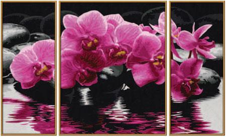 Malen nach Zahlen Bild Orchideen - 609260603 von Schipper