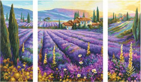 Malen nach Zahlen Bild Lavendelfelder - 609260604 von Schipper