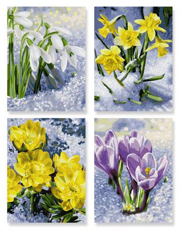 Malen nach Zahlen Bild Frühlingserwachen - 609340713 von Schipper