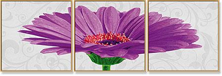 Malen nach Zahlen Bild Gerbera Jamesonii Violett - Triptychon - 609400683 von Schipper