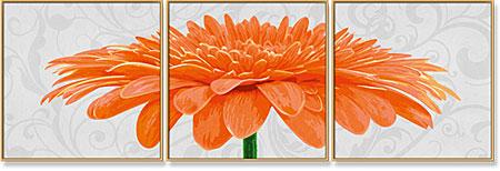 Malen nach Zahlen Bild Chrysanthemum Grandiflorum Orange - Triptychon - 609400684 von Schipper