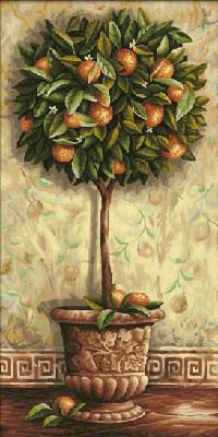Malen nach Zahlen Bild Citrus aurantium - 609220398 von Schipper