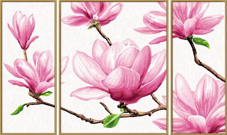 Malen nach Zahlen Bild Magnolien - Triptychon - 609260527 von Schipper